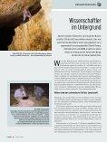 Sommer 2005 - Naturhistorisches Museum Wien - Seite 4