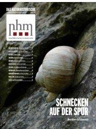 Weichtiere in Österreich - Naturhistorisches Museum Wien