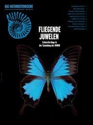 FLIEGENDE JUWELEN - Naturhistorisches Museum Wien