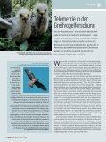 FLIEGENDE JUWELEN - Naturhistorisches Museum Wien - Seite 6