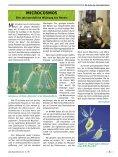 896.Das Naturhistorische - Dezember 1999 - Naturhistorisches ... - Seite 3