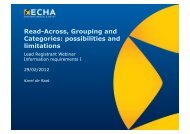Read-Across, Grouping and Categories: possibilities and ... - Europa