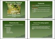 Phytotoxicity Phytotoxicity Assays