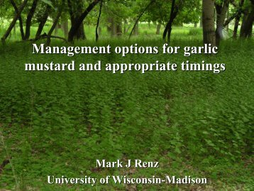 Management options for garlic mustard and appropriate timings
