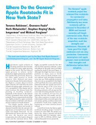 Geneva® Apple Rootstocks in NY - New York State Horticultural ...