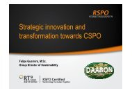Strategic innovation and transformation towards CSPO - RT9 2011