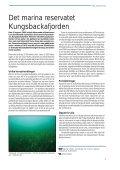 Slutlig Havsmiljön 2006 - Havet.nu - Page 7