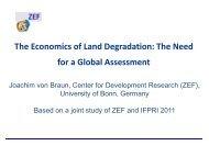 Joachim von Braun Center for Development Research (ZEF) (PDF ...