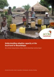 Understanding adaptive capacity at the local level in Mozambique