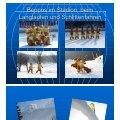 PDF 2,6MB - SV Ruhpolding - Seite 5