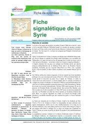 Fiche signalétique de la Syrie - ILE-DE-FRANCE INTERNATIONAL