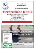 SC Kirchberg - SV Schönau - Seite 6