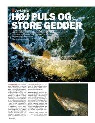 pdf - 1107 KB - Jens Bursell