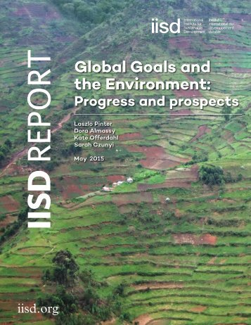 global-goals-and-environment-progress-prospects