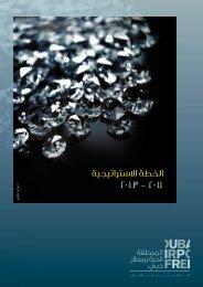 DAFZ Strategic Plan, 2011-2013