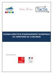 SCHEMA DIRECTEUR D'AMENAGEMENT ... - Région Réunion