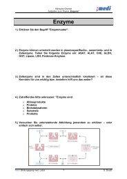 Enzyme - Medizinisches Labor 08-11's Blog