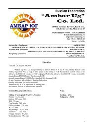 """Ambar Ug"" Co. Ltd."