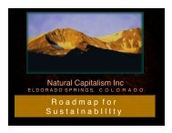 Sustainability Strategy - Natural Capitalism Solutions