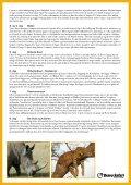 Download program for turen her (pdf) - Aalborg Zoo - Page 3