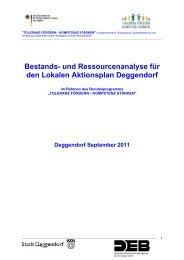 und Ressourcenanalyse für den Lokalen Aktionsplan Deggendorf