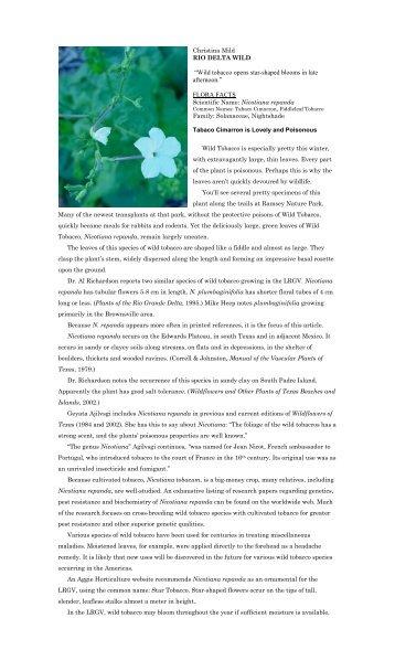"""Nicotiana repanda.pdf - Christina Mild's """"Rio Delta Wild"""""""