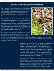 Black Chantarelles.pdf - The Mushroom Hunter