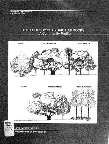 The Ecology of Hydric Hammocks - USGS National Wetlands ...