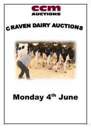 dairy cattle - CCM Auctions