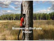 Biomass to BioFuels Primer