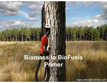 Biomass to BioFuels Primer