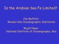 Is the Arabian Sea Fe Limited?