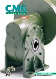 FRS-SGA geared motors - Bertda Services