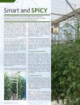Breeding for yield - Page 3