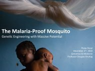 The Malaria-Proof Mosquito Genetic engineering with massive ...