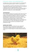 Krav til slaktekyllingproduksjon - Nortura - Page 4