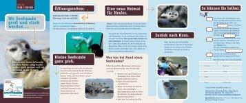 Der aktuelle Prospekt - Seehundstation Norddeich