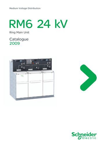 Catalog RM6 ring main unit 24 kV - Schneider Electric