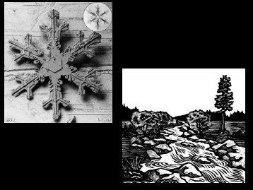 Electron microscope photo of snowflake