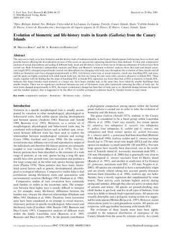 Evolution of biometric and life-history traits in lizards ... - Lacerta