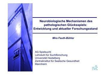 Gluecksspieltagung_BMF_2012_Praesentation Fauth-Buehler