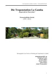 Bericht download - Tropenstation | La Gamba