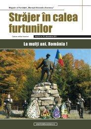 La mulţi ani, România! - Revista Forţelor Terestre
