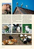 Heft 1/2013 - Pro Tier - Page 5