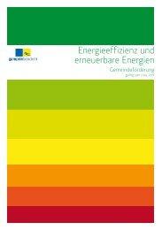 Flyer Energieeffizienz und erneuerbare Energien - Gemeinde Gamprin