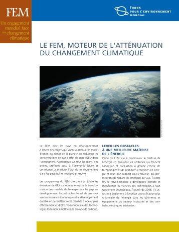 le fem, moteur de l'atténuation du changement ... - UN CC:Learn