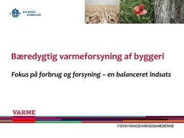 Varmeplan Danmark 2010 i praksis