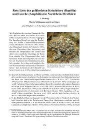 Rote Liste der gefährdeten Kriechtiere (Reptilia) und ... - LANUV NRW