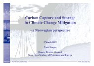 Carbon Capture and Storage in Climate Change Mitigation