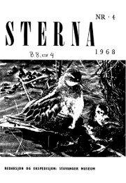 Sterna, bind 8 nr 4 (PDF-fil) - Museum Stavanger